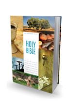 NIV Textbook Bible